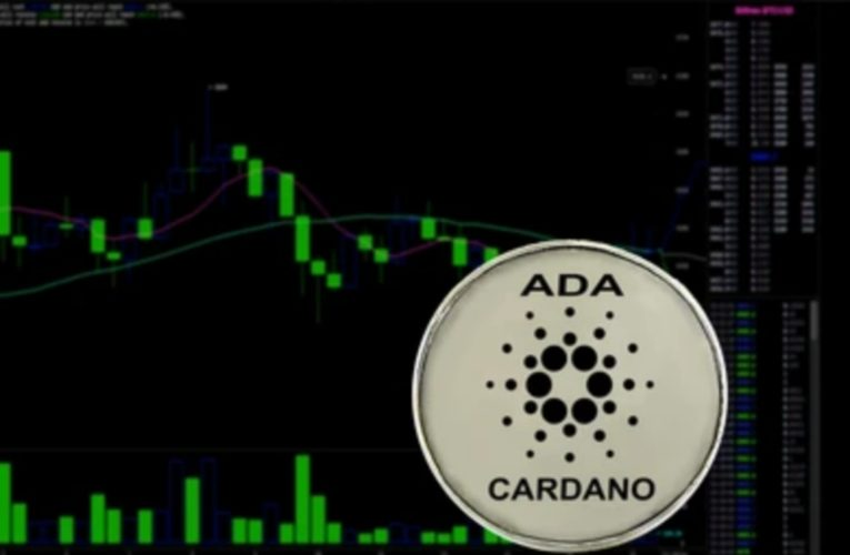 Cardano Witnessing Volatility In The Market