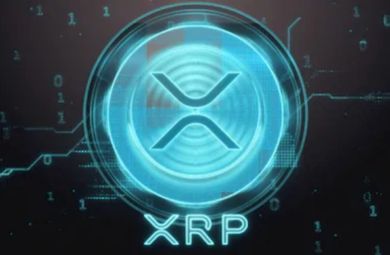 XRP Sees Massive Spike After WallStreetBets Tweet