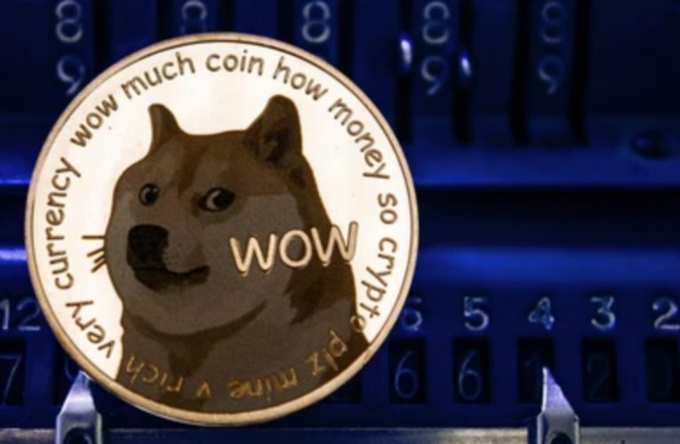 DOGE Faces A Flat Price Crash Of 30% After Tesla CEO Called Dogecoin A Hustle