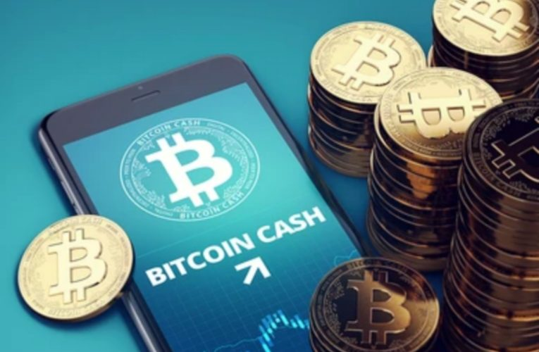 Bitcoin Cash Sees Slight Decline To Trade At $877
